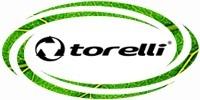 Торели torelli мультиклапан купить ремонт (Копировать) (Копировать)